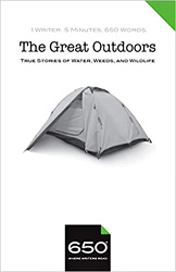 The Great Outdoors cover
